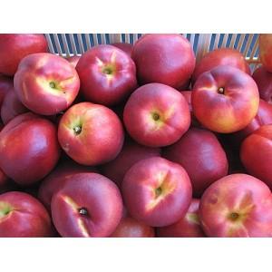 Nectarine au kg