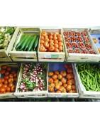 legume-de-saison
